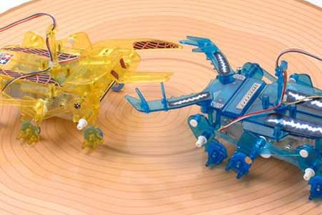 Insect Battle Set